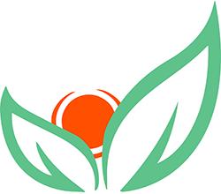 Schoolgyn.ru - Практика есть единственный путь к знанию! - Целью проекта Школа для врачей является организация и развитие совместного пространства для обмена мнениями с коллегами и экспертами и практической отработки современных подходов в тактике ведения пациентов.